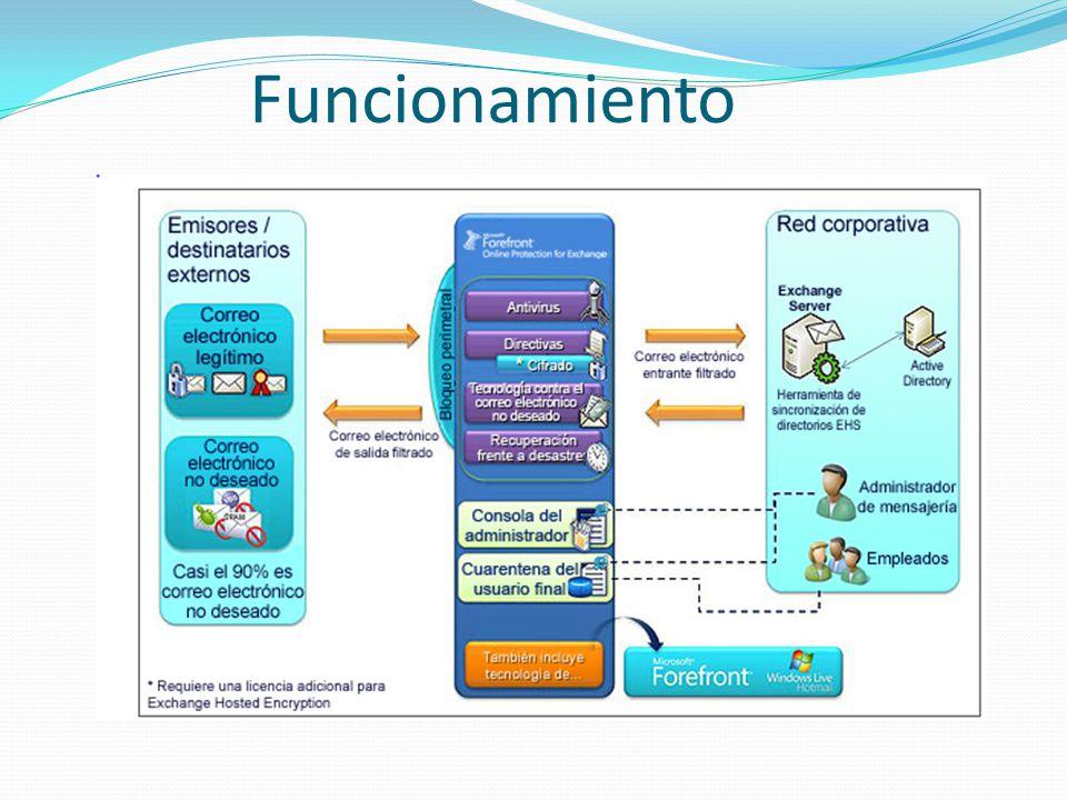 Domain – Notificaciones y Direcciones IP