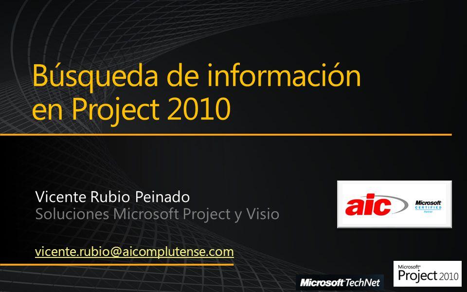 Resaltar tareas y recursos Búsqueda de información en Project 2010