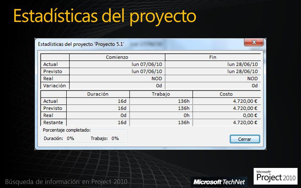 Estadísticas del proyecto Búsqueda de información en Project 2010