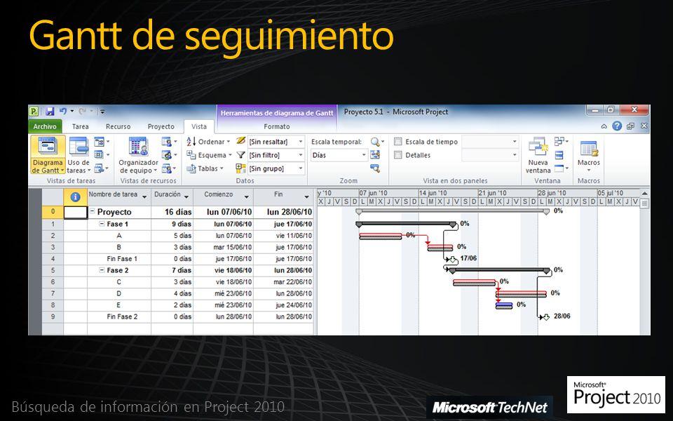 Uso de tareas Búsqueda de información en Project 2010