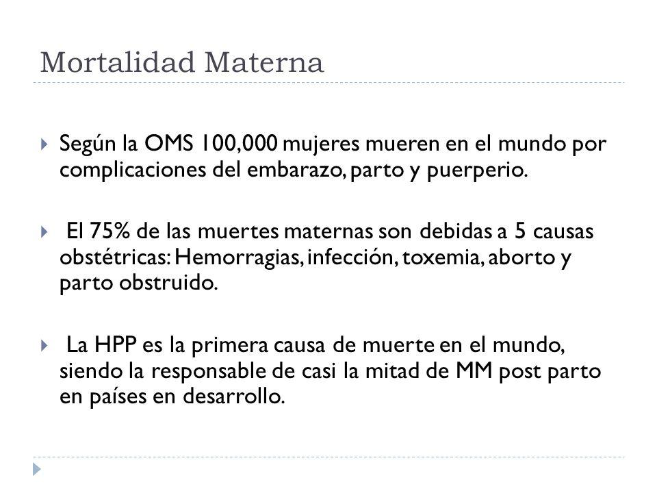 Mortalidad Materna Según la OMS 100,000 mujeres mueren en el mundo por complicaciones del embarazo, parto y puerperio.