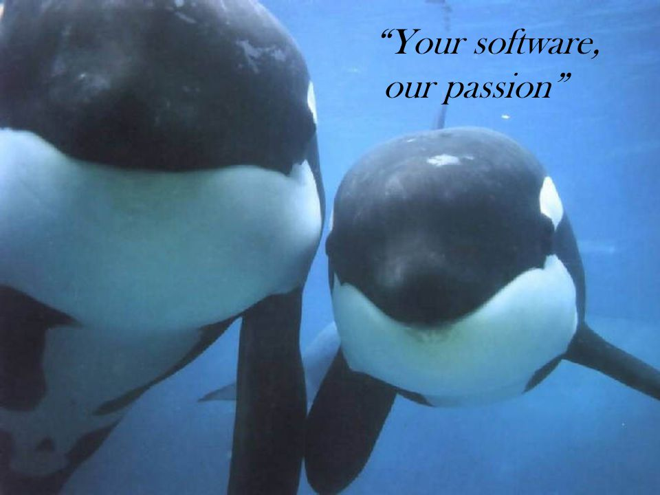 Your software, our passion