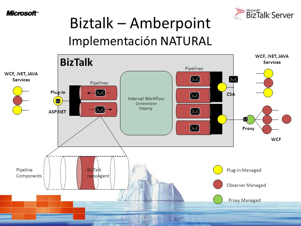 Biztalk – Amberpoint Implementación NATURAL Internal Workflow Orchestration Mapping Plug-In BizTalk Pipelines Pipeline Components BizTalk nanoAgent Pr