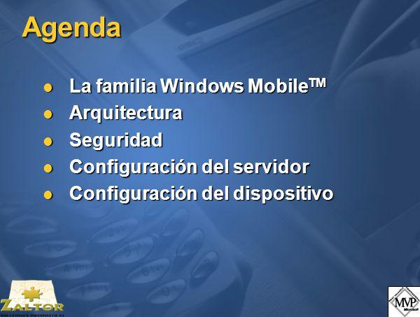 Seguridad ActiveSync.Certificados privados (III) SmartPhone 2002.