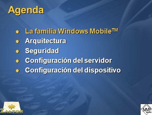 Seguridad ActiveSync.Certificados privados (IV) Pocket PC 2003 y SmartPhone 2003.