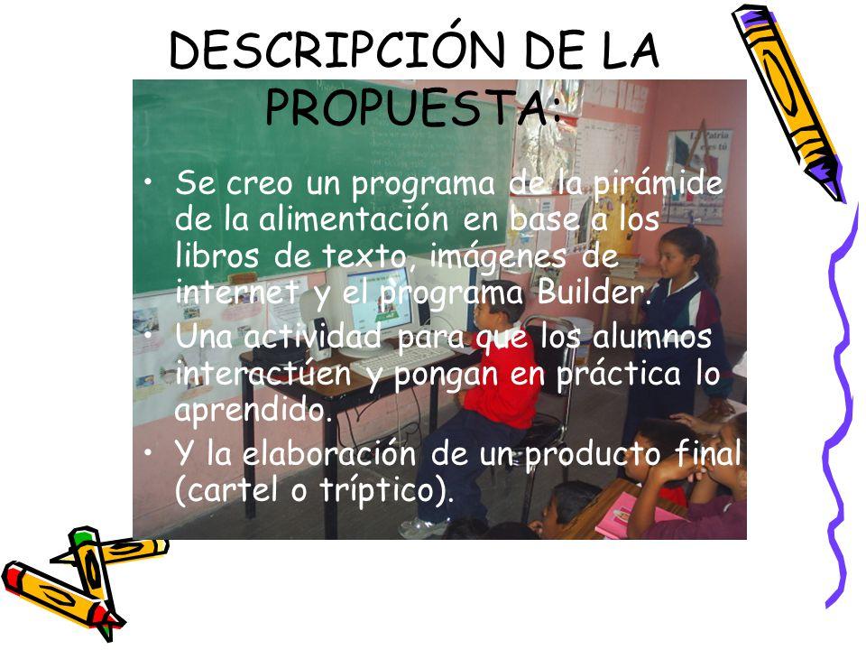 DESCRIPCIÓN DE LA PROPUESTA: Se creo un programa de la pirámide de la alimentación en base a los libros de texto, imágenes de internet y el programa Builder.