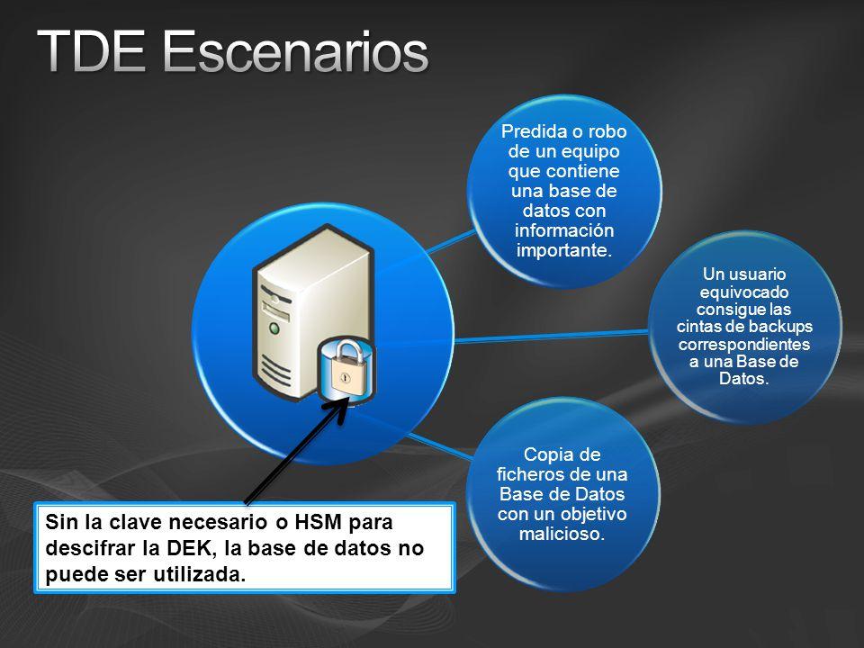 Predida o robo de un equipo que contiene una base de datos con información importante. Copia de ficheros de una Base de Datos con un objetivo malicios