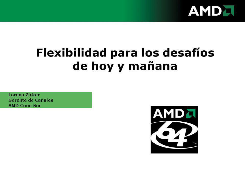 Flexibilidad para los desafíos de hoy y mañana Lorena Zicker Gerente de Canales AMD Cono Sur