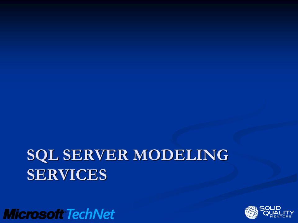 SQL SERVER MODELING SERVICES