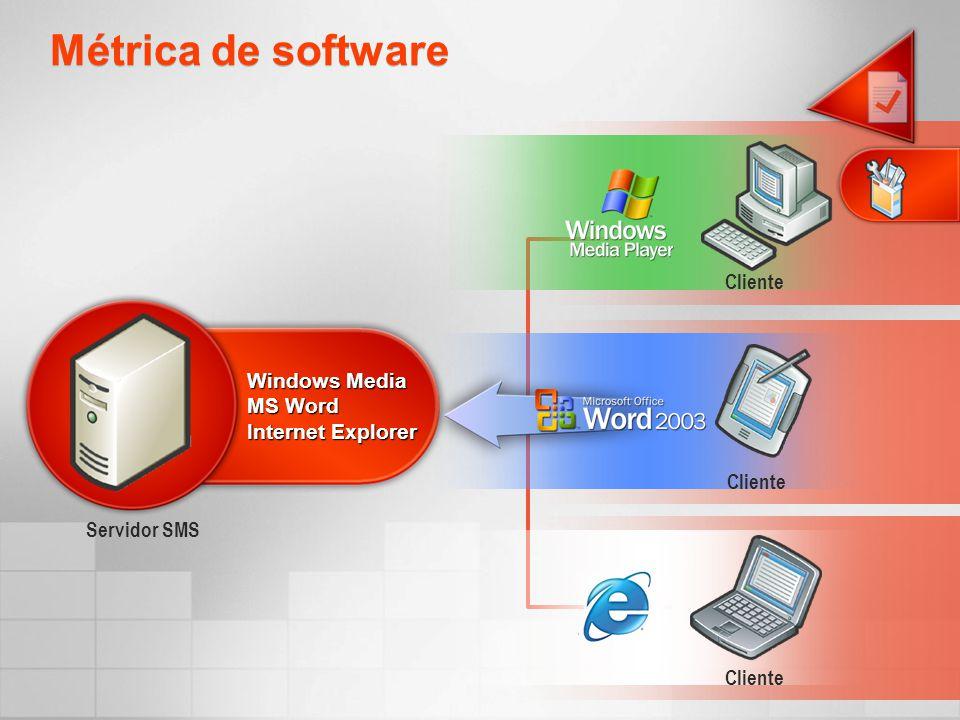 Métrica de software Servidor SMS Cliente Windows Media MS Word Internet Explorer