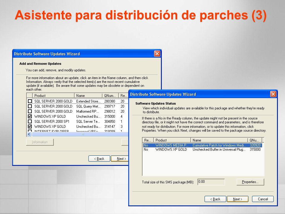 Asistente para distribución de parches (3)
