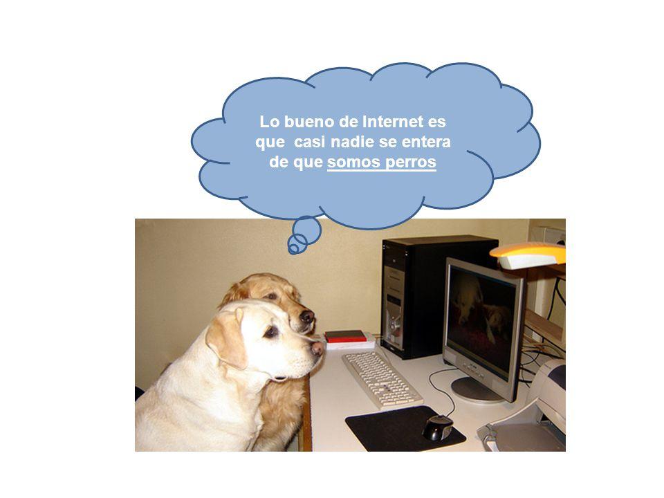 Lo bueno de Internet es que casi nadie se entera de que somos perros