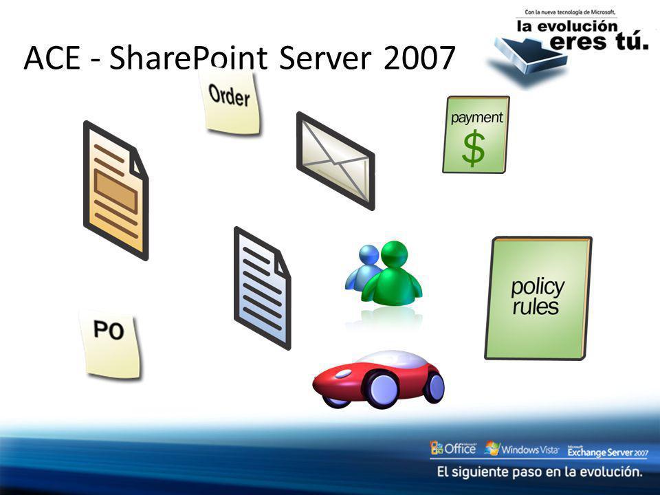 ACE - SharePoint Server 2007