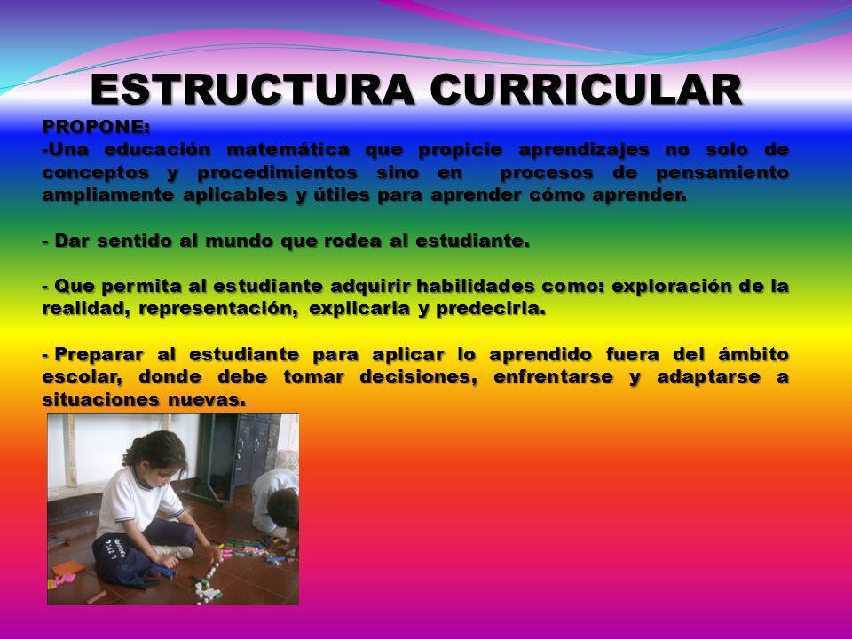 ESTRUCTURA CURRICULAR PROPONE: -Una educación matemática que propicie aprendizajes no solo de conceptos y procedimientos sino en procesos de pensamien
