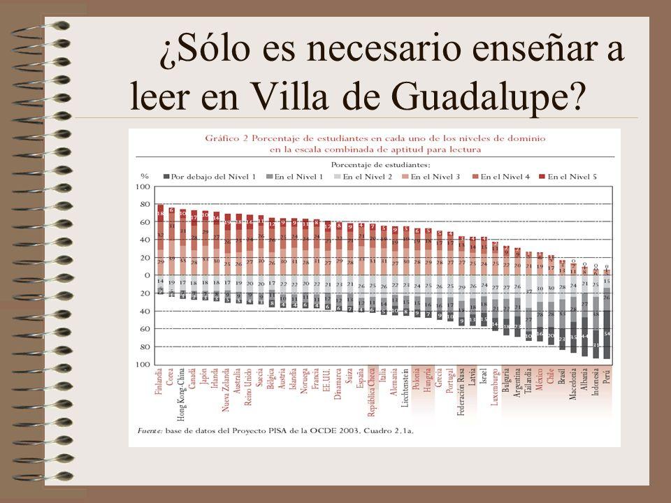 ¿Sólo es necesario enseñar a leer en Villa de Guadalupe?