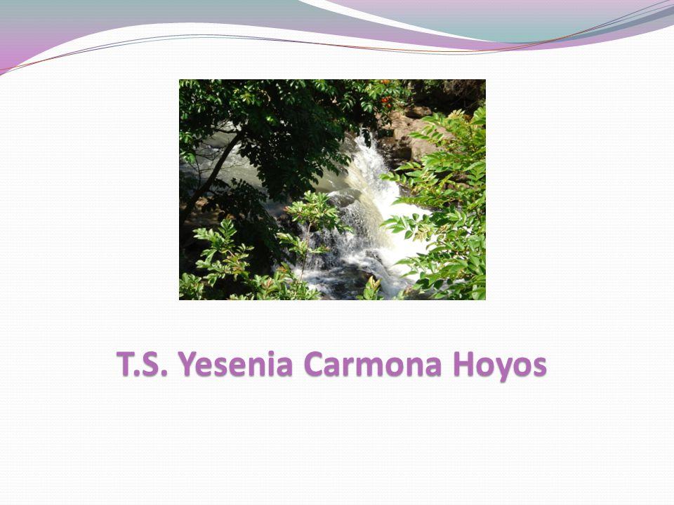 T.S. Yesenia Carmona Hoyos