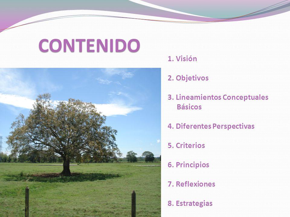 1.Visión 2. Objetivos 3. Lineamientos Conceptuales Básicos 4.