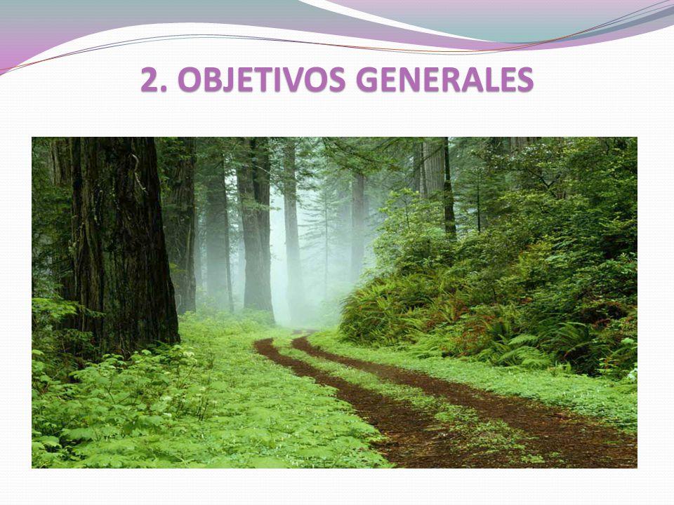 2. OBJETIVOS GENERALES
