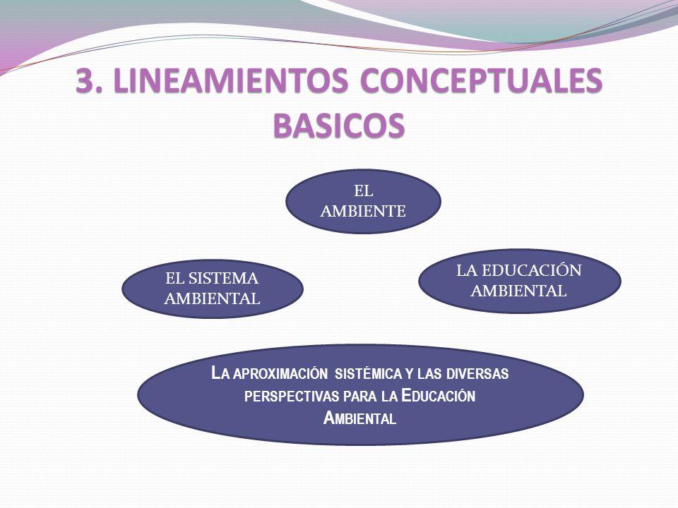 3. LINEAMIENTOS CONCEPTUALES BASICOS EL AMBIENTE EL SISTEMA AMBIENTAL LA EDUCACIÓN AMBIENTAL L A APROXIMACIÓN SISTÉMICA Y LAS DIVERSAS PERSPECTIVAS PA
