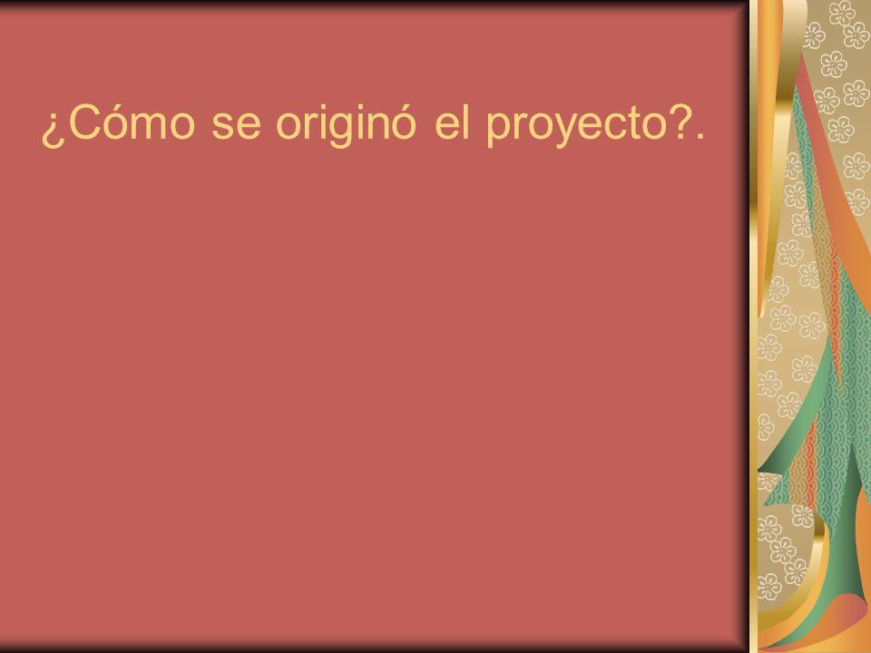 ¿Cómo se originó el proyecto?.