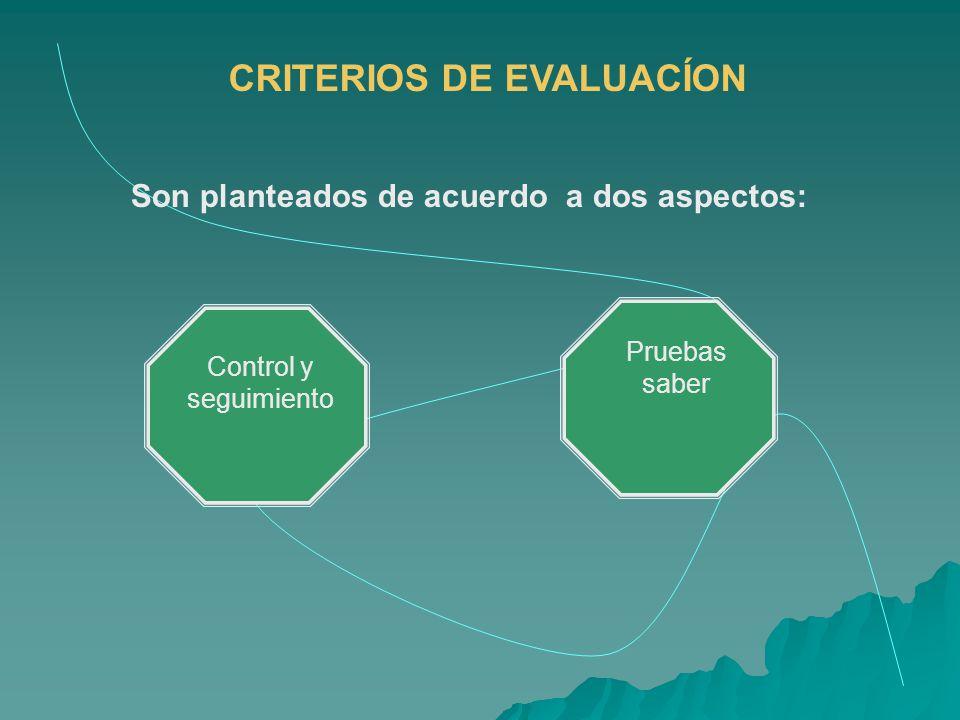 CRITERIOS DE EVALUACÍON Son planteados de acuerdo a dos aspectos: Control y seguimiento Pruebas saber