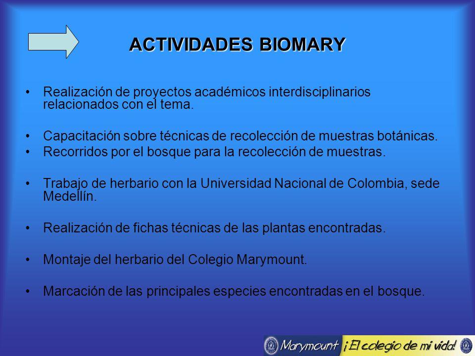ACTIVIDADES BIOMARY Realización de proyectos académicos interdisciplinarios relacionados con el tema.