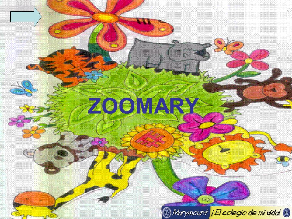 ZOOMARY