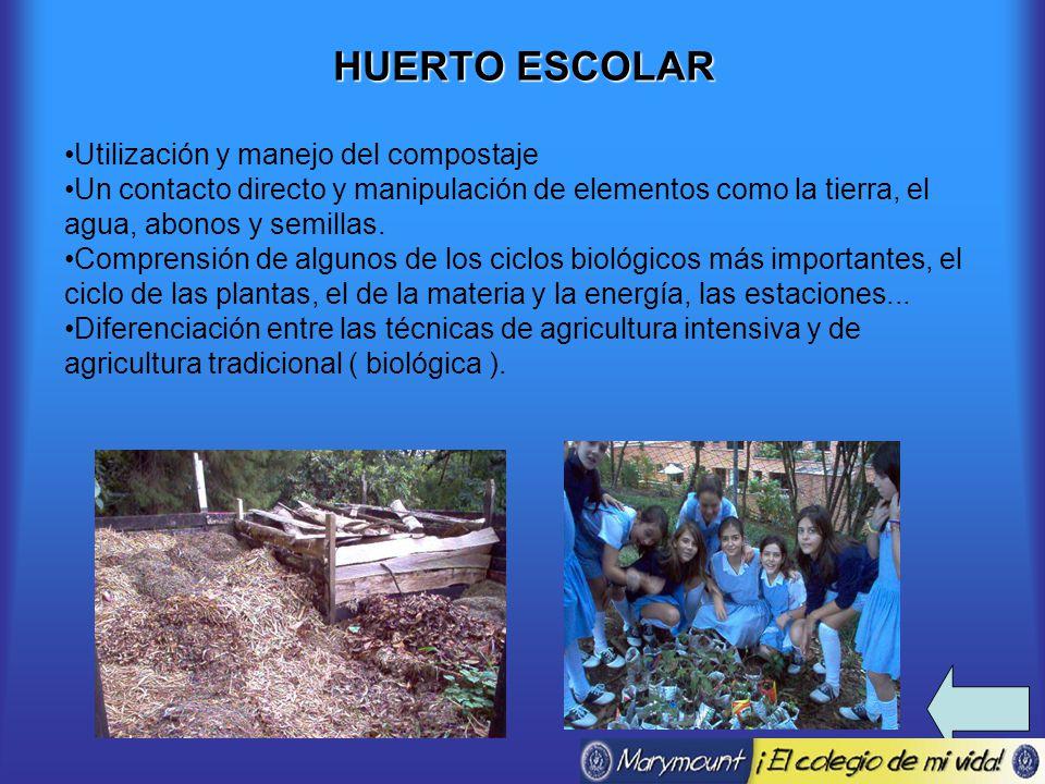 HUERTO ESCOLAR Utilización y manejo del compostaje Un contacto directo y manipulación de elementos como la tierra, el agua, abonos y semillas.