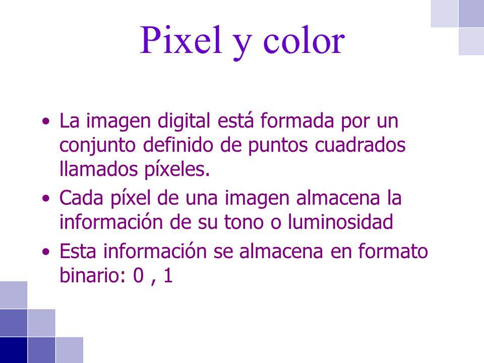 La imagen digital está formada por un conjunto definido de puntos cuadrados llamados píxeles. Cada píxel de una imagen almacena la información de su t