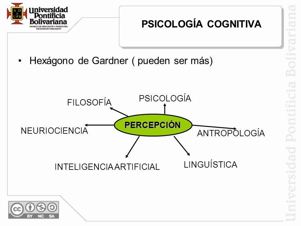 PSICOLOGÍA COGNITIVA Hexágono de Gardner ( pueden ser más) PERCEPCIÓN PSICOLOGÍA ANTROPOLOGÍA LINGUÍSTICA NEURIOCIENCIA INTELIGENCIA ARTIFICIAL FILOSO