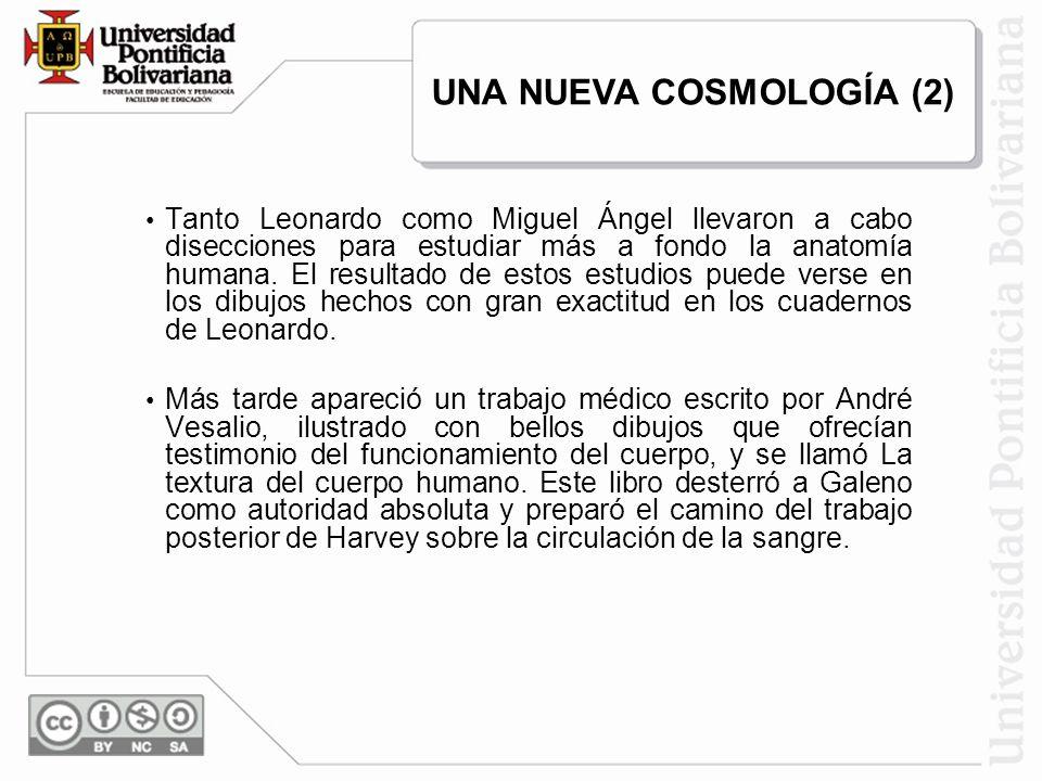 Tanto Leonardo como Miguel Ángel llevaron a cabo disecciones para estudiar más a fondo la anatomía humana. El resultado de estos estudios puede verse