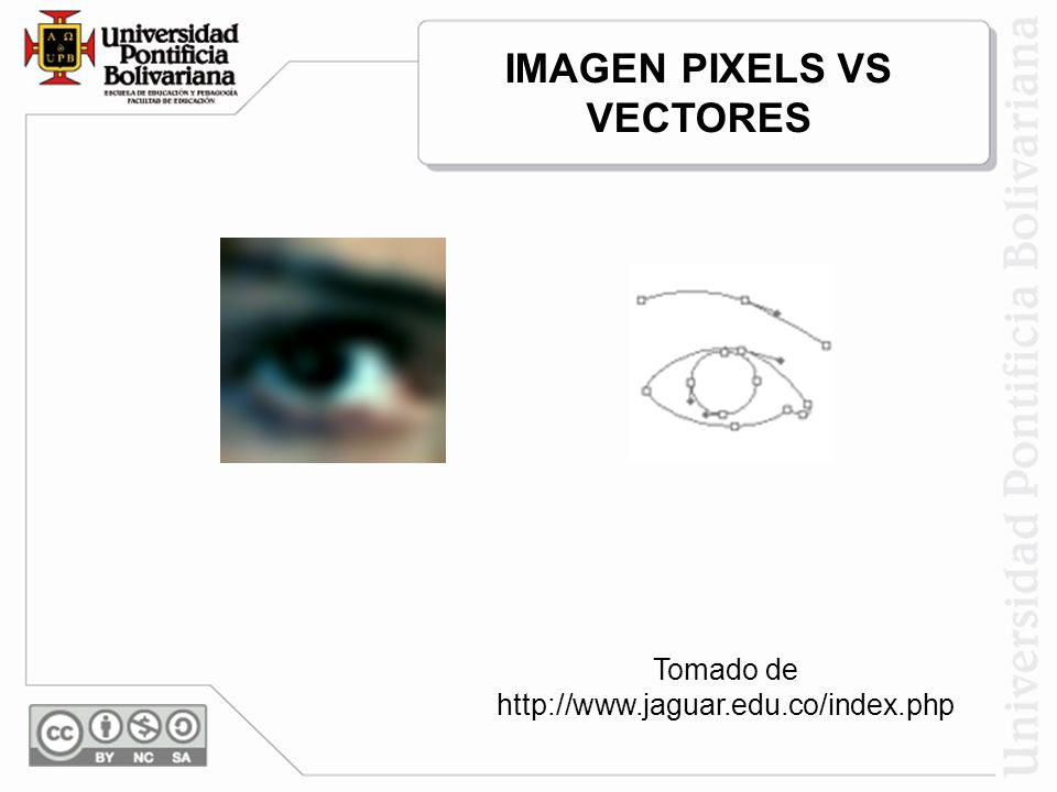 Tomado de http://www.jaguar.edu.co/index.php IMAGEN PIXELS VS VECTORES