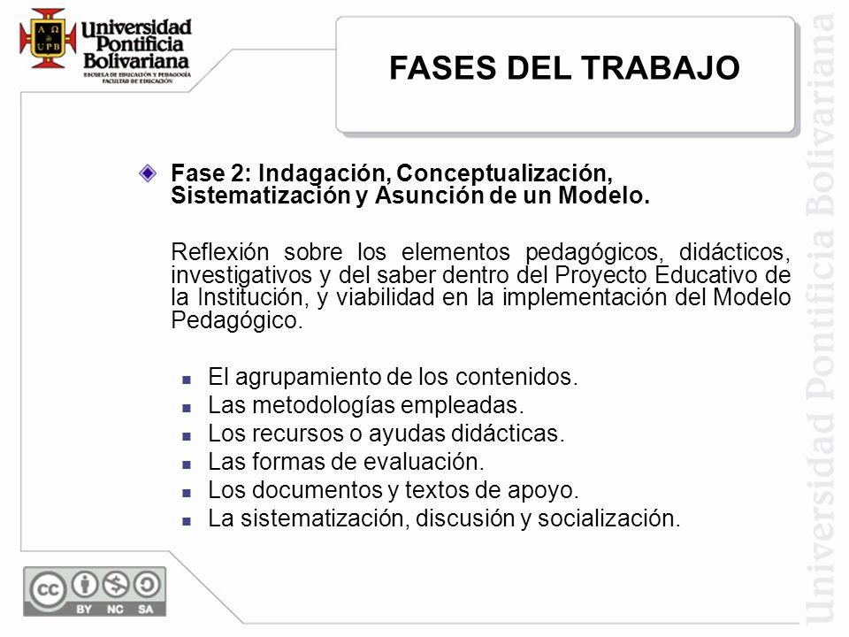 Fase 2: Indagación, Conceptualización, Sistematización y Asunción de un Modelo. Reflexión sobre los elementos pedagógicos, didácticos, investigativos
