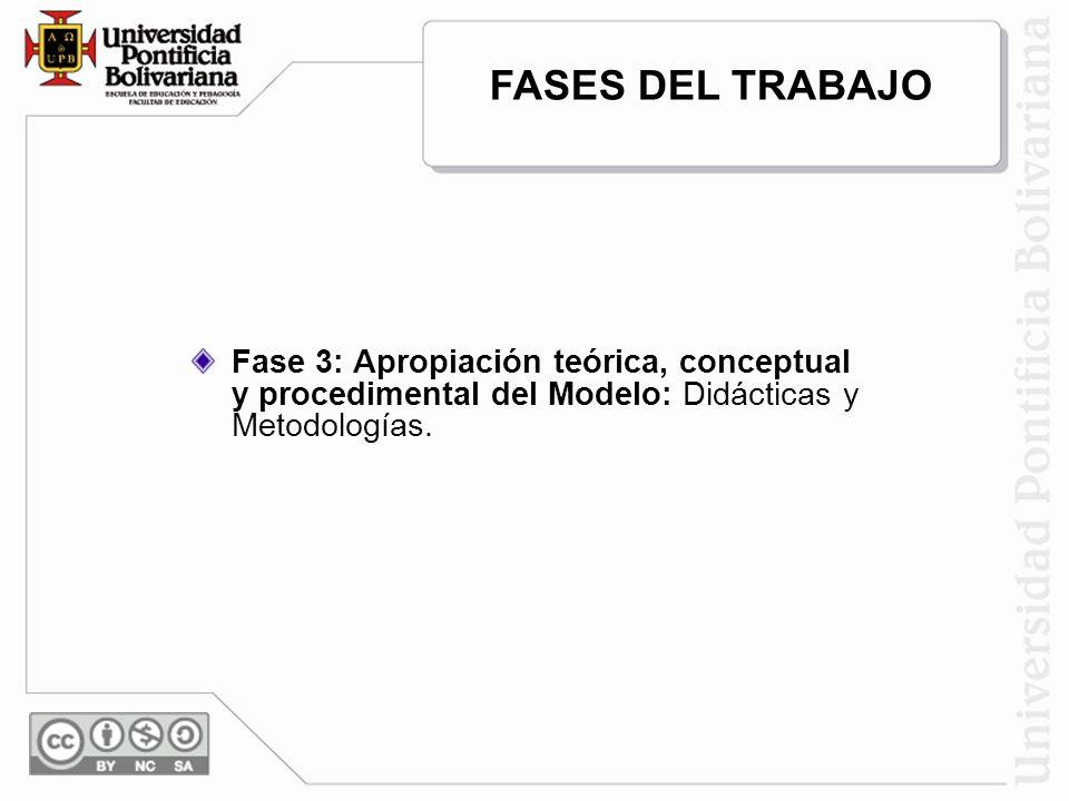 Fase 3: Apropiación teórica, conceptual y procedimental del Modelo: Didácticas y Metodologías. FASES DEL TRABAJO
