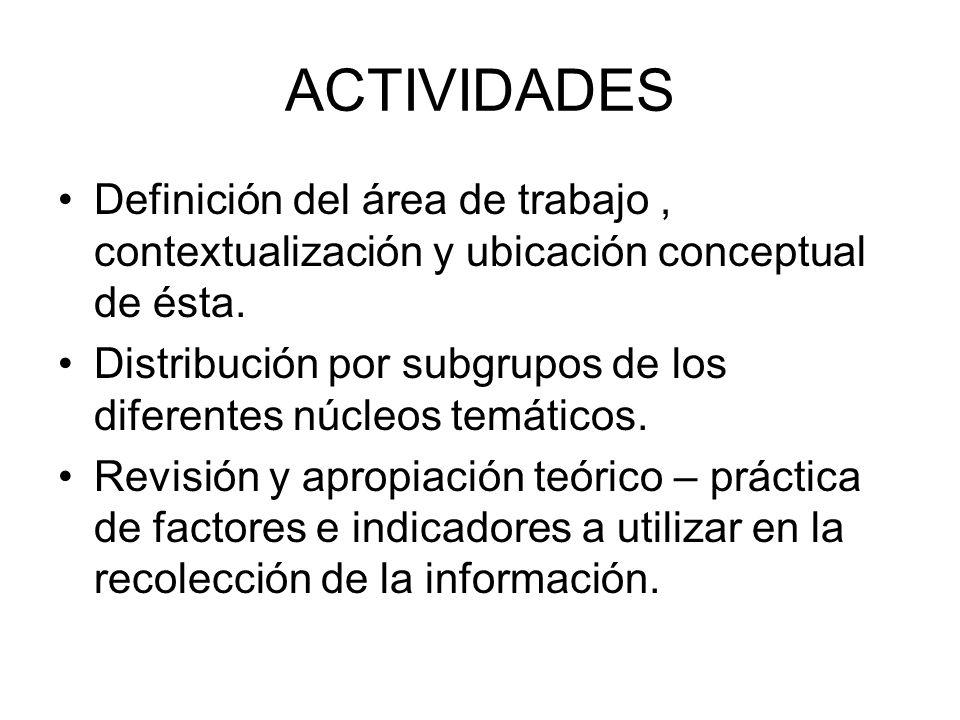 ACTIVIDADES Definición del área de trabajo, contextualización y ubicación conceptual de ésta. Distribución por subgrupos de los diferentes núcleos tem