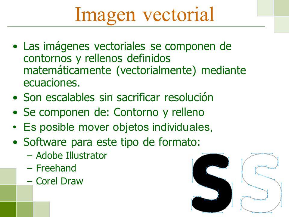 Imagen vectorial Las imágenes vectoriales se componen de contornos y rellenos definidos matemáticamente (vectorialmente) mediante ecuaciones. Son esca