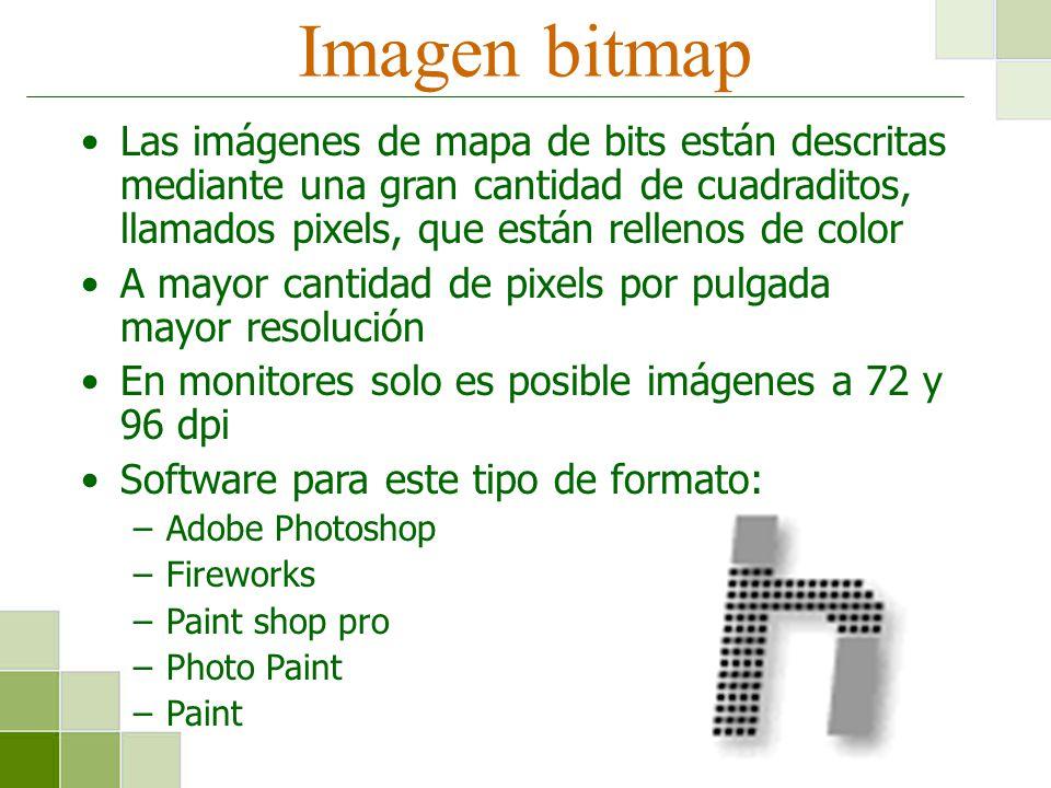 Imagen bitmap Las imágenes de mapa de bits están descritas mediante una gran cantidad de cuadraditos, llamados pixels, que están rellenos de color A m