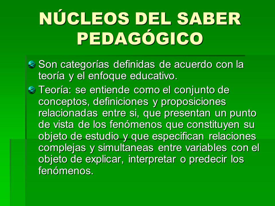 NÚCLEOS DEL SABER PEDAGÓGICO Son categorías definidas de acuerdo con la teoría y el enfoque educativo. Teoría: se entiende como el conjunto de concept
