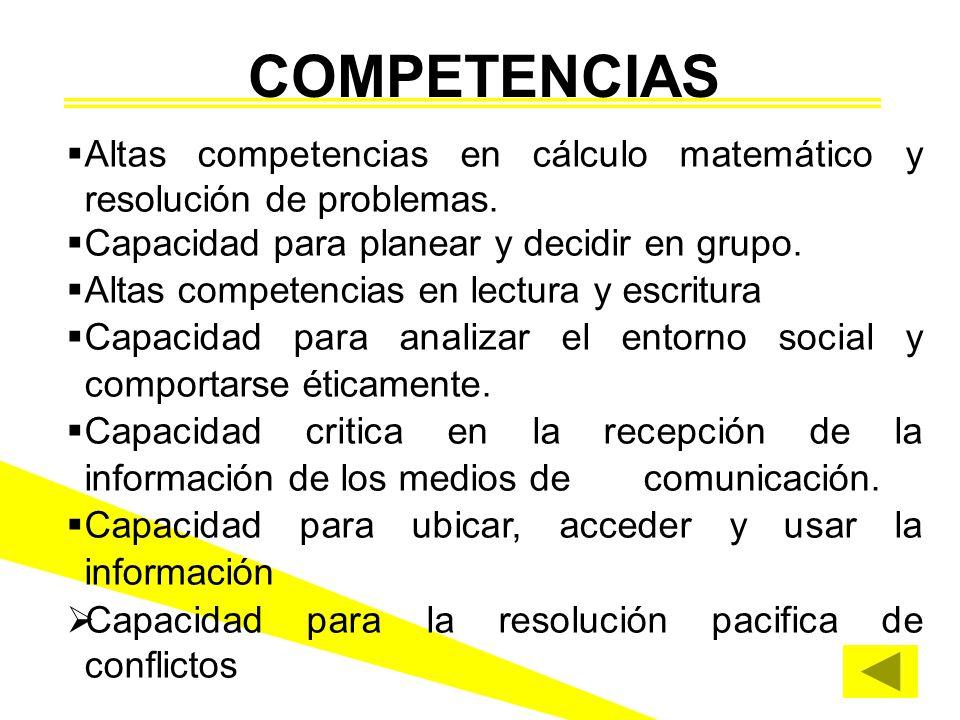 Altas competencias en cálculo matemático y resolución de problemas. Capacidad para planear y decidir en grupo. Altas competencias en lectura y escritu