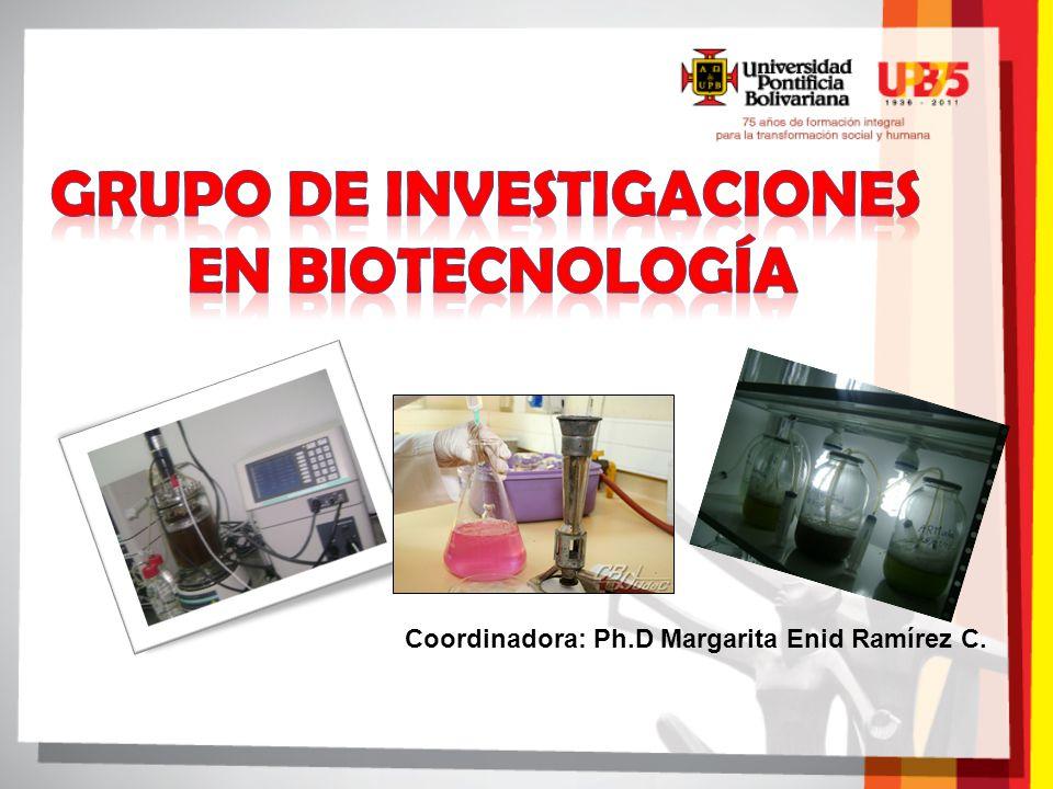 Coordinadora: Ph.D Margarita Enid Ramírez C.