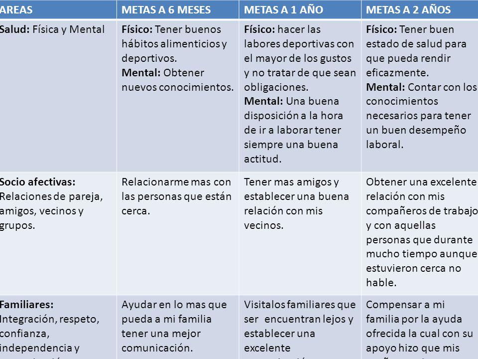 AREASMETAS A 6 MESESMETAS A 1 AÑOMETAS A 2 AÑOS Salud: Física y MentalFísico: Tener buenos hábitos alimenticios y deportivos. Mental: Obtener nuevos c