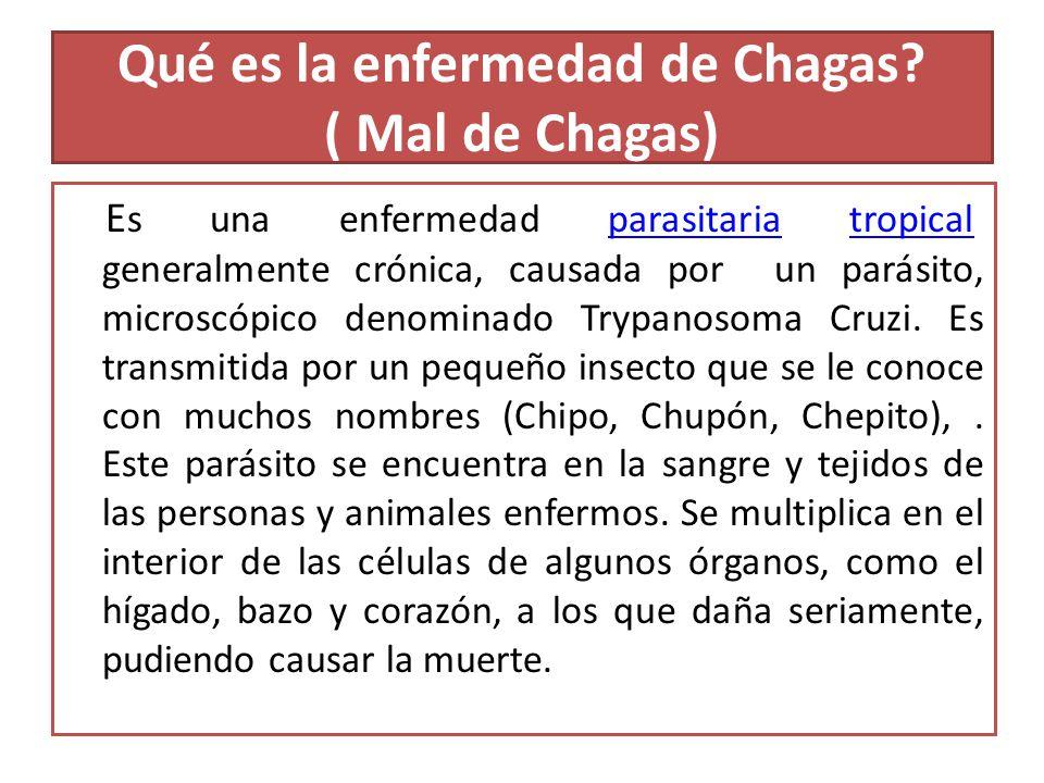 Qué es la enfermedad de Chagas? ( Mal de Chagas) E s una enfermedad parasitaria tropical, generalmente crónica, causada por un parásito, microscópico