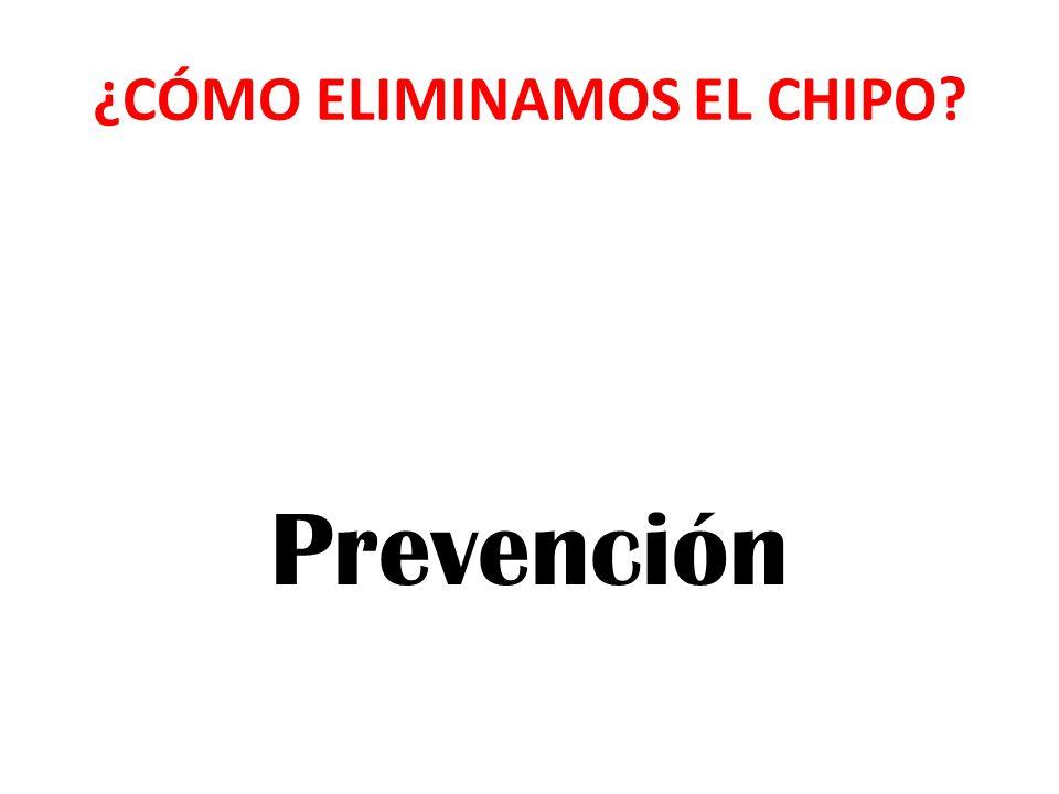 ¿CÓMO ELIMINAMOS EL CHIPO? Prevención