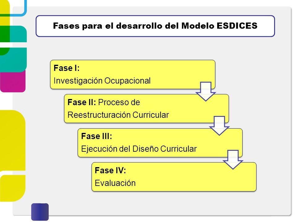 Fases para el desarrollo del Modelo ESDICES Fase I: Investigación Ocupacional Fase II: Proceso de Reestructuración Curricular Fase III: Ejecución del