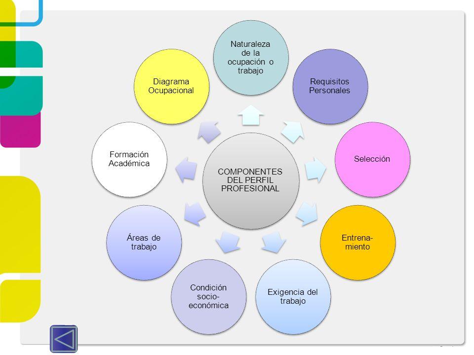 COMPONENTES DEL PERFIL PROFESIONAL Naturaleza de la ocupación o trabajo Requisitos Personales Selección Entrena- miento Exigencia del trabajo Condició