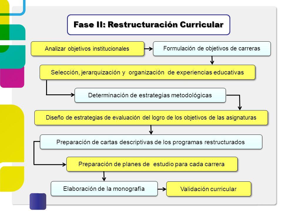 Fase II: Restructuración Curricular Analizar objetivos institucionales Formulación de objetivos de carreras Selección, jerarquización y organización d