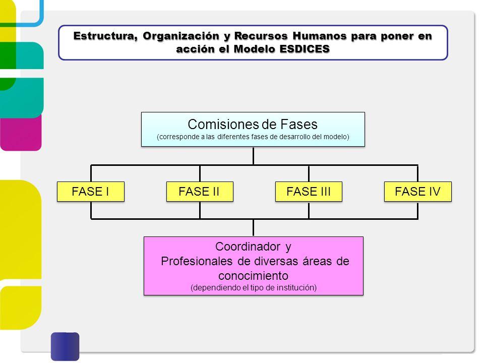 Estructura, Organización y Recursos Humanos para poner en acción el Modelo ESDICES FASE I FASE II Coordinador y Profesionales de diversas áreas de con