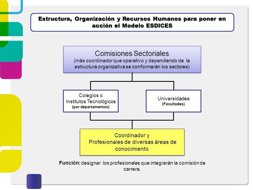 Estructura, Organización y Recursos Humanos para poner en acción el Modelo ESDICES Comisiones Sectoriales (más coordinador que operativo y dependiendo