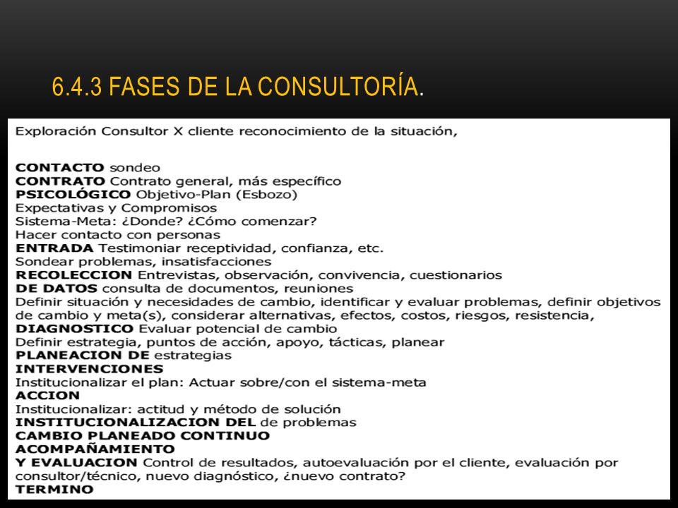 6.4.3 FASES DE LA CONSULTORÍA.
