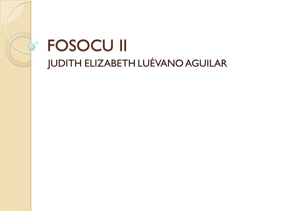 FOSOCU II JUDITH ELIZABETH LUÉVANO AGUILAR